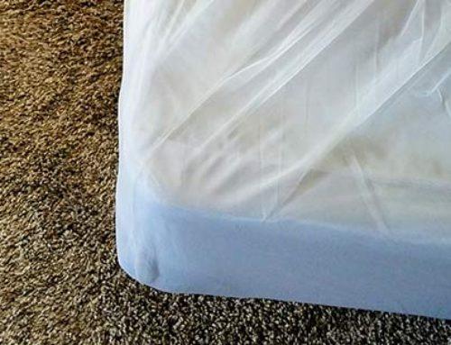 Bed Bug Prevention Tips